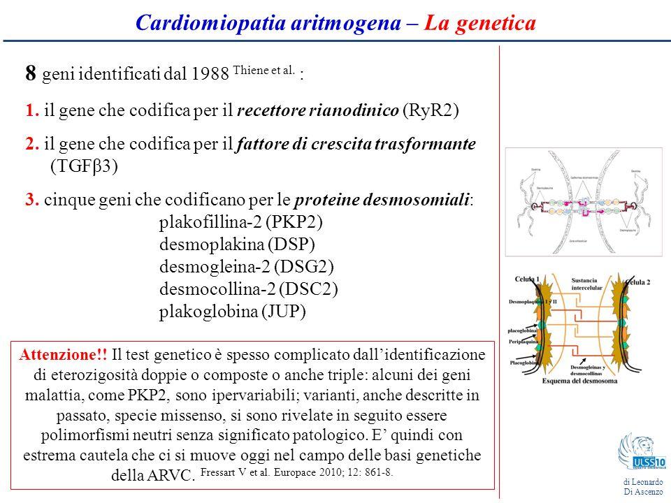 Cardiomiopatia aritmogena – La genetica