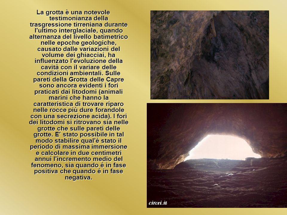 La grotta è una notevole testimonianza della trasgressione tirreniana durante l ultimo interglaciale, quando alternanza del livello batimetrico nelle epoche geologiche, causato dalle variazioni del volume dei ghiacciai, ha influenzato l evoluzione della cavità con il variare delle condizioni ambientali.