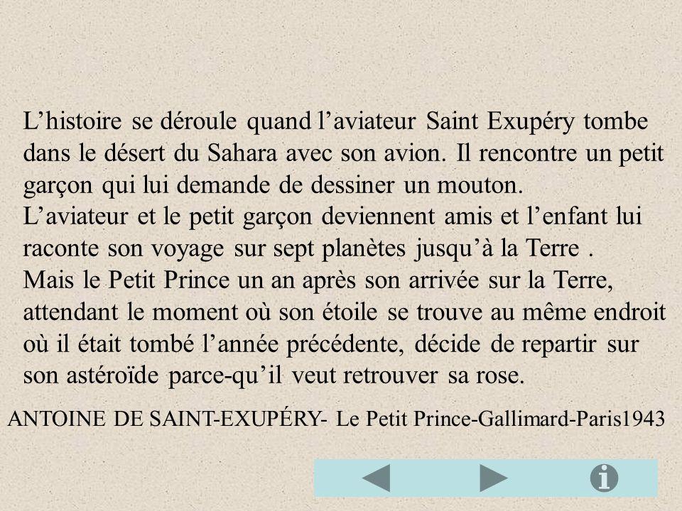 L'histoire se déroule quand l'aviateur Saint Exupéry tombe dans le désert du Sahara avec son avion. Il rencontre un petit garçon qui lui demande de dessiner un mouton.