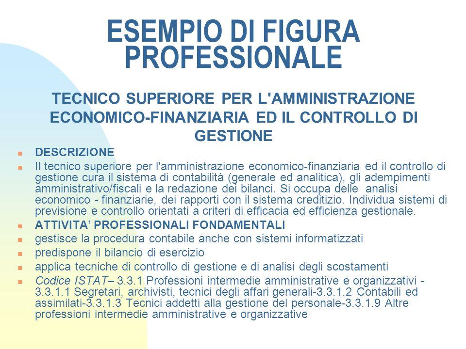 ESEMPIO DI FIGURA PROFESSIONALE