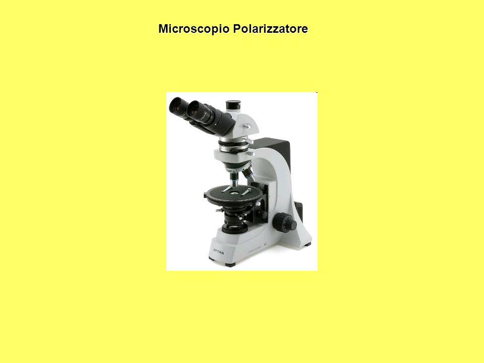 Microscopio Polarizzatore