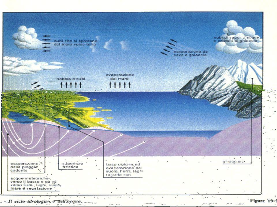 In una terra più calda, sarà più veloce il ciclo idrologico ovvero il processo di scambio di acqua tra oceano, terra ed atmosfera.