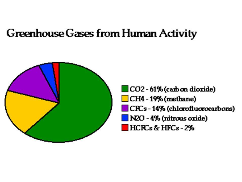 I principali gas che provocano l'effetto serra sono l'anidride carbonica, il metano, i clorofluorocarbur ie gli ossidi di azoto.