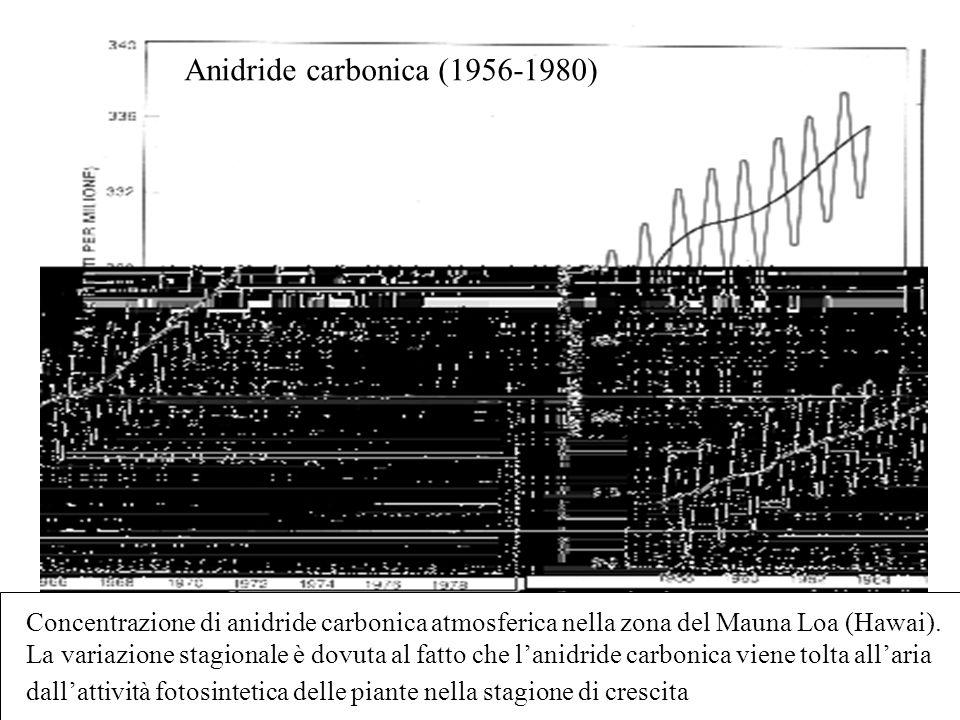 Anidride carbonica (1956-1980)