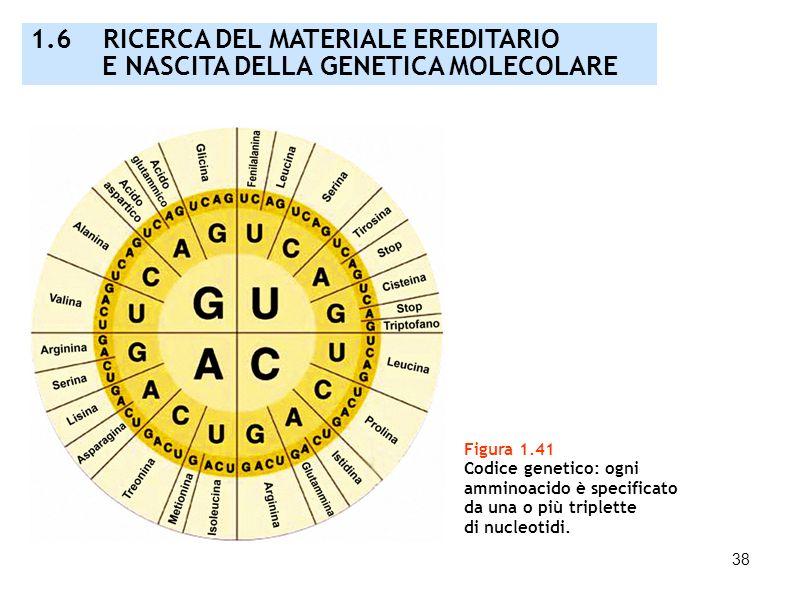 1.6 RICERCA DEL MATERIALE EREDITARIO