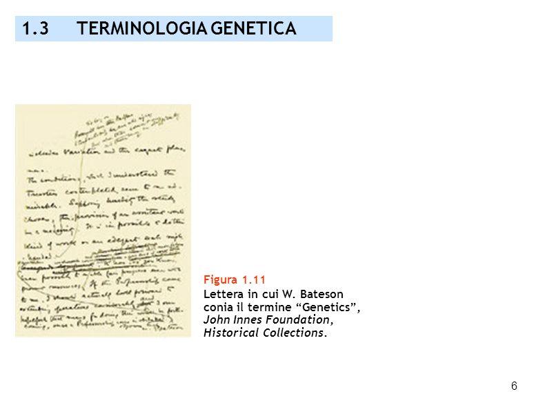 1.3 TERMINOLOGIA GENETICA