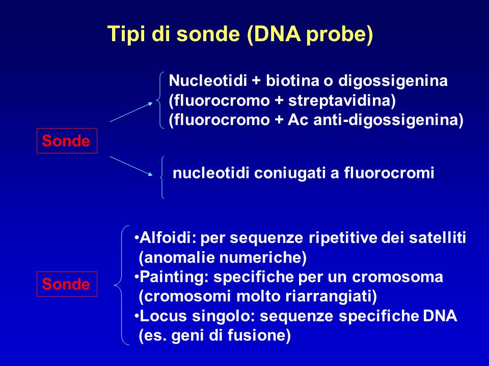 Tipi di sonde (DNA probe)