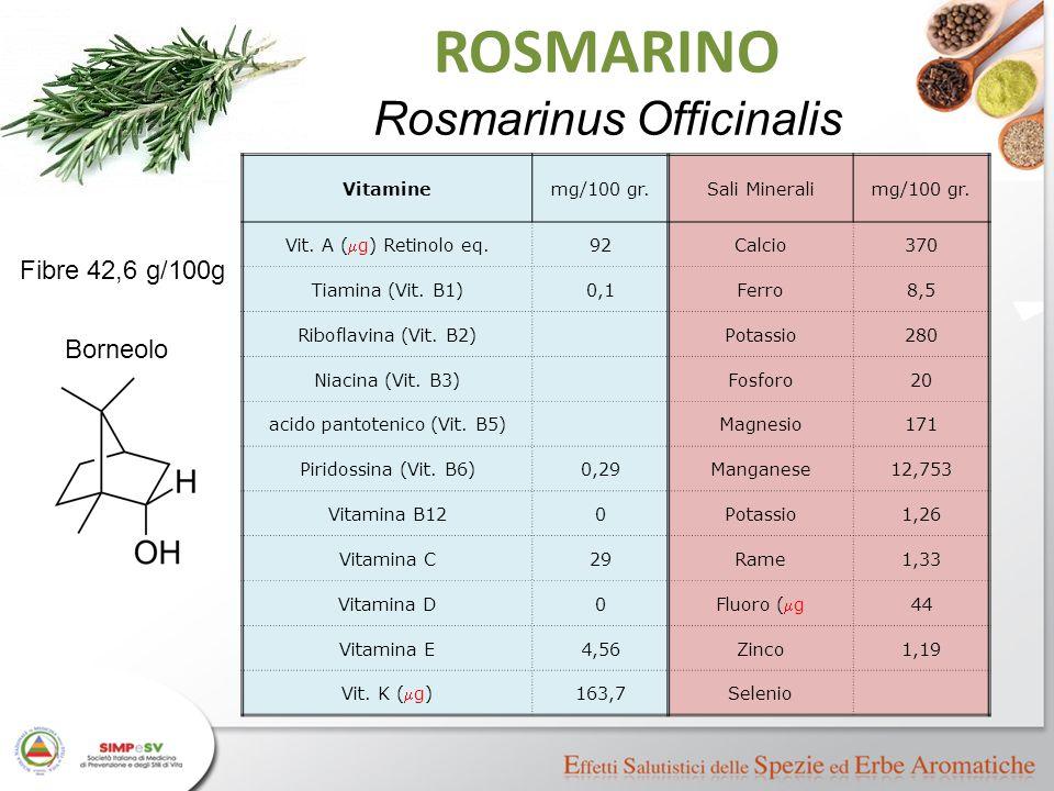 ROSMARINO Rosmarinus Officinalis Fibre 42,6 g/100g Borneolo Vitamine