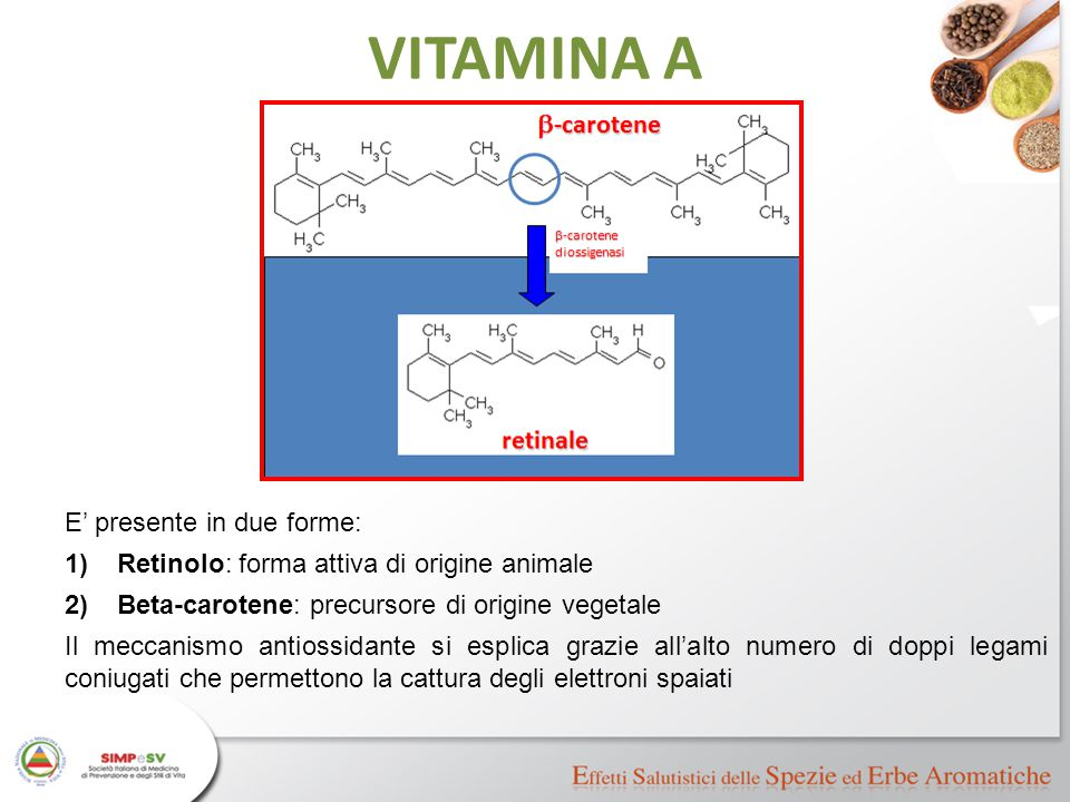 VITAMINA A E' presente in due forme:
