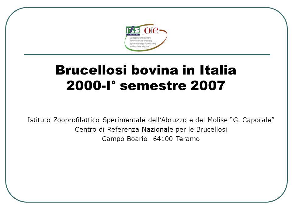 Brucellosi bovina in Italia 2000-I° semestre 2007