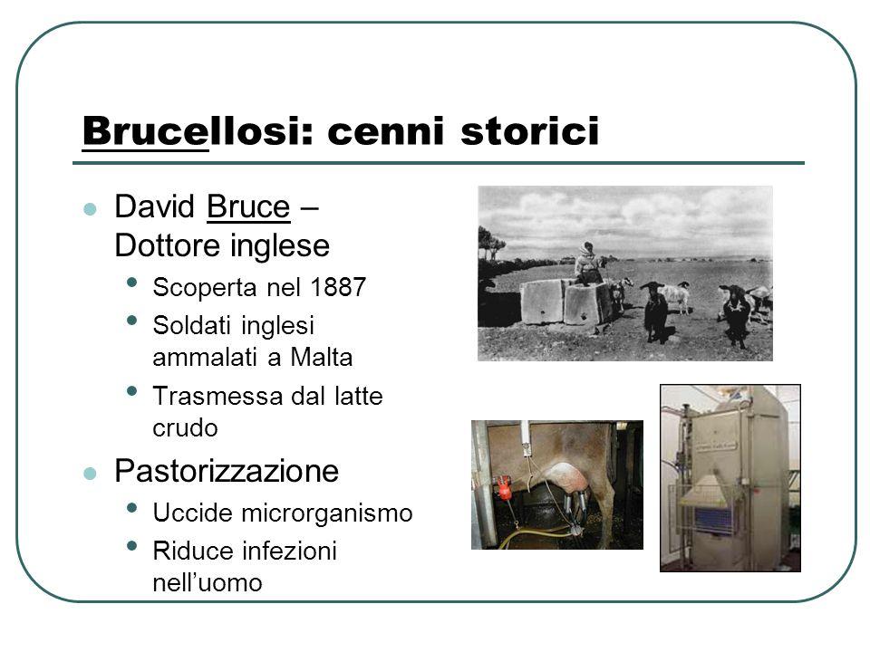 Brucellosi: cenni storici