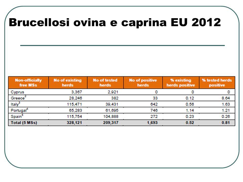 Brucellosi ovina e caprina EU 2012