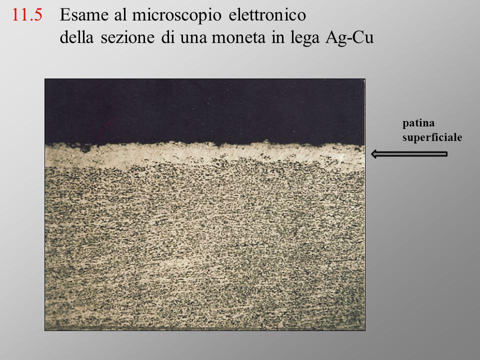 Esame al microscopio elettronico