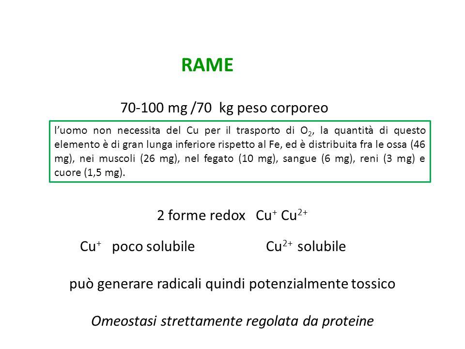 RAME 70-100 mg /70 kg peso corporeo 2 forme redox Cu+ Cu2+