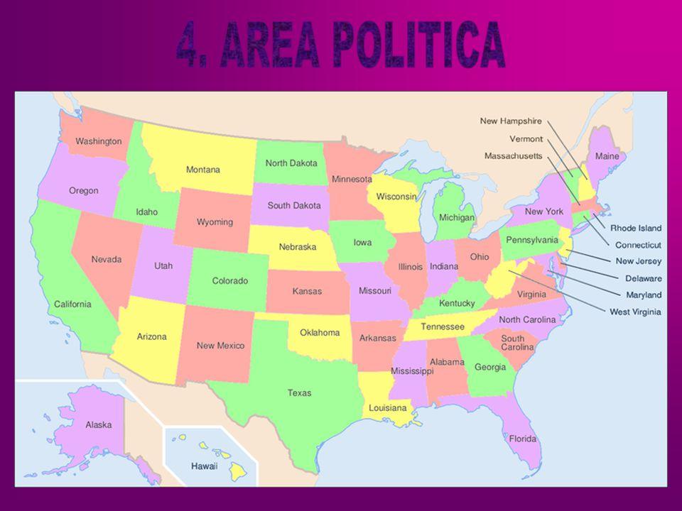 4. AREA POLITICA