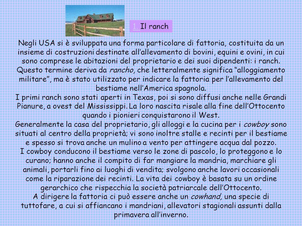 Gli stati uniti presentati da carolina baronchelli ppt for Rimodella a forma di ranch della casa