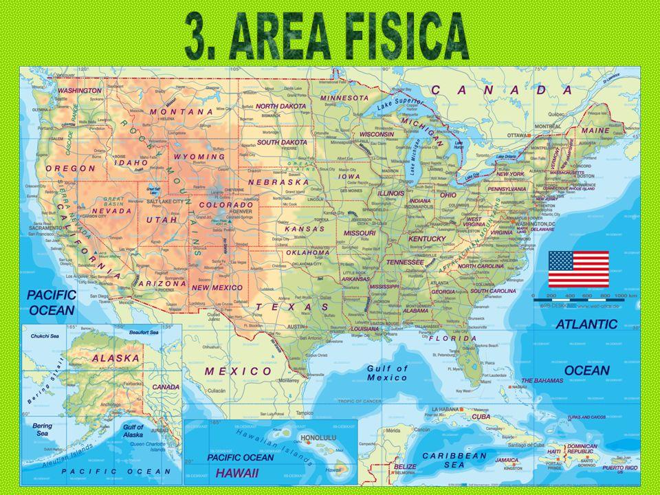 3. AREA FISICA