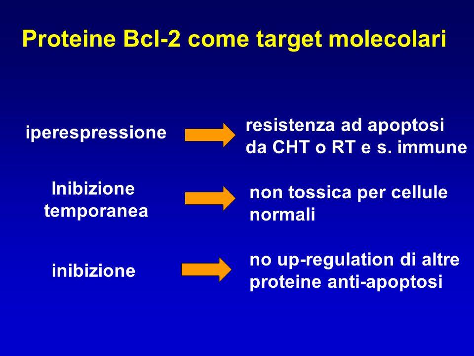 Proteine Bcl-2 come target molecolari