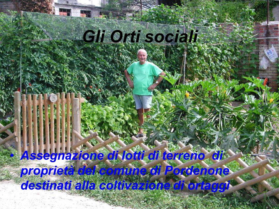 Gli Orti sociali Assegnazione di lotti di terreno di proprietà del comune di Pordenone destinati alla coltivazione di ortaggi.