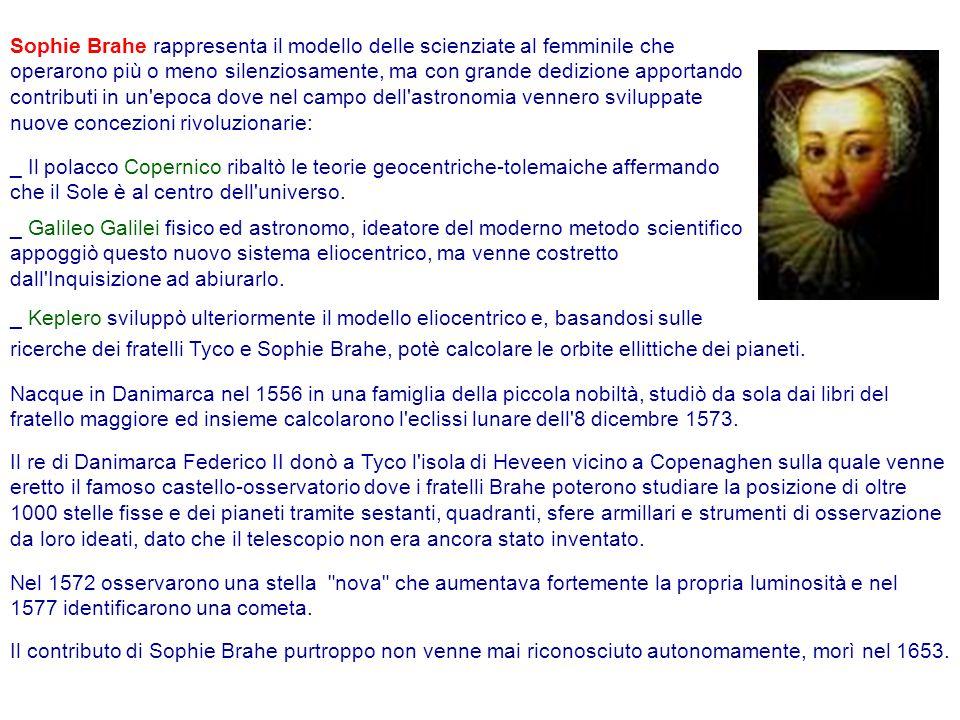 Sophie Brahe rappresenta il modello delle scienziate al femminile che operarono più o meno silenziosamente, ma con grande dedizione apportando contributi in un epoca dove nel campo dell astronomia vennero sviluppate nuove concezioni rivoluzionarie: