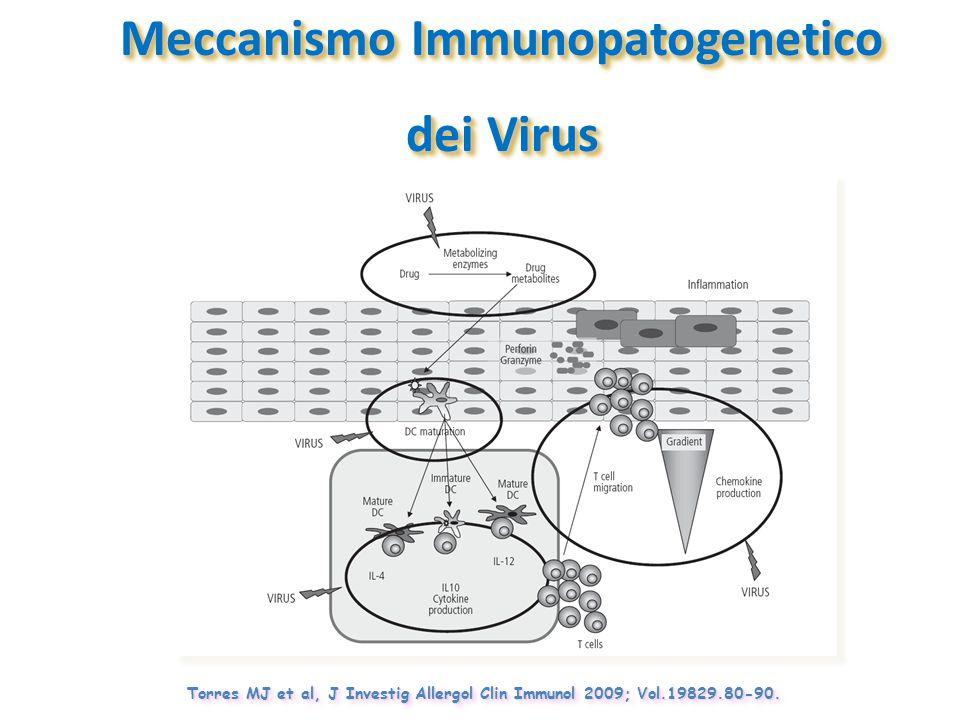 Meccanismo Immunopatogenetico