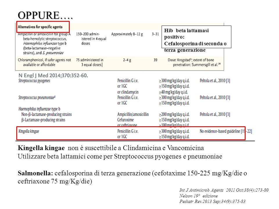 OPPURE…. Hib beta lattamasi positivo: Cefalosporina di seconda o. terza generazione.