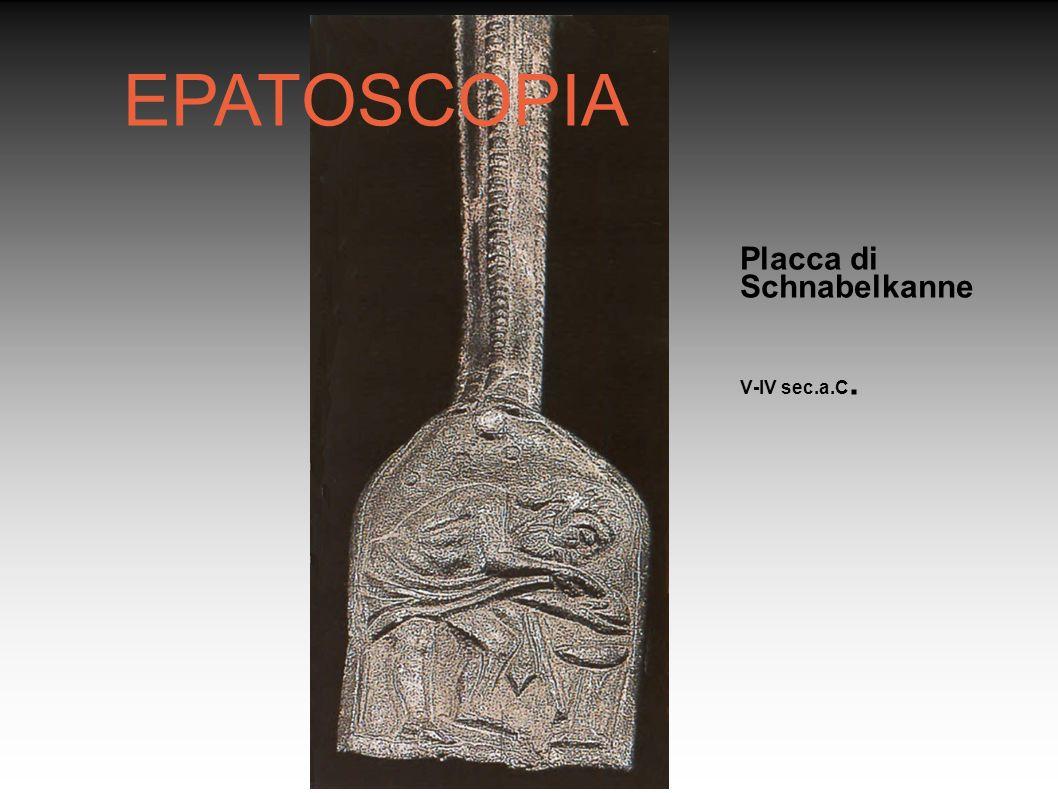 EPATOSCOPIA Placca di Schnabelkanne V-IV sec.a.C. Rosanna Guerzoni