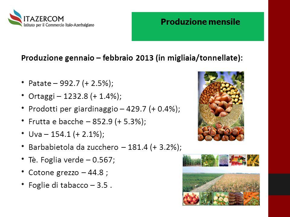 Produzione gennaio – febbraio 2013 (in migliaia/tonnellate):