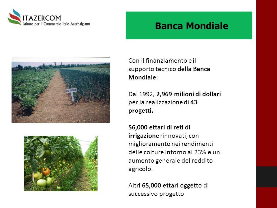 Banca Mondiale Con il finanziamento e il supporto tecnico della Banca Mondiale: