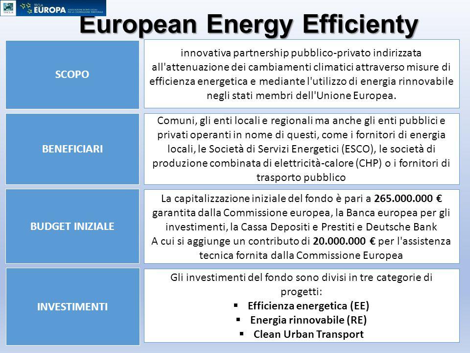 European Energy Efficienty Fund