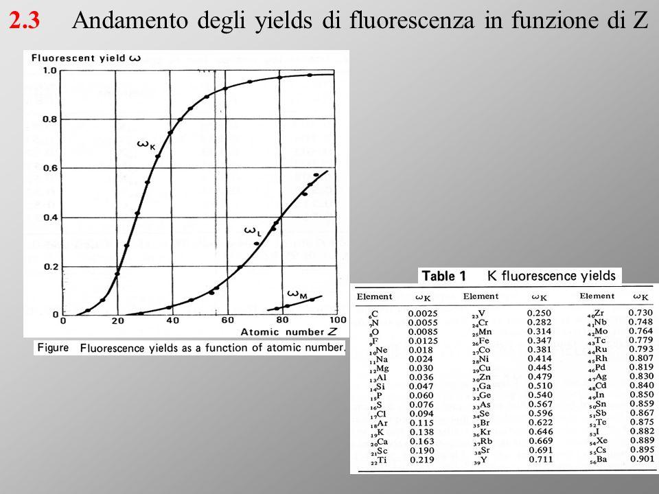 Andamento degli yields di fluorescenza in funzione di Z