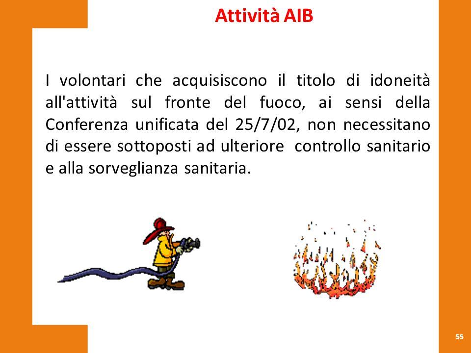 Attività AIB
