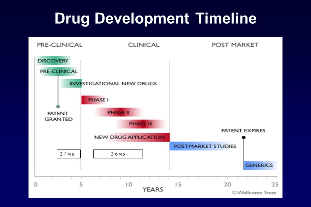 Drug Development Timeline