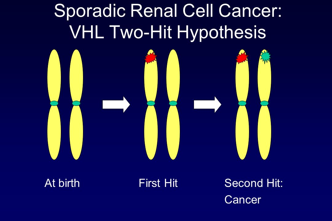 Sporadic Renal Cell Cancer: VHL Two-Hit Hypothesis