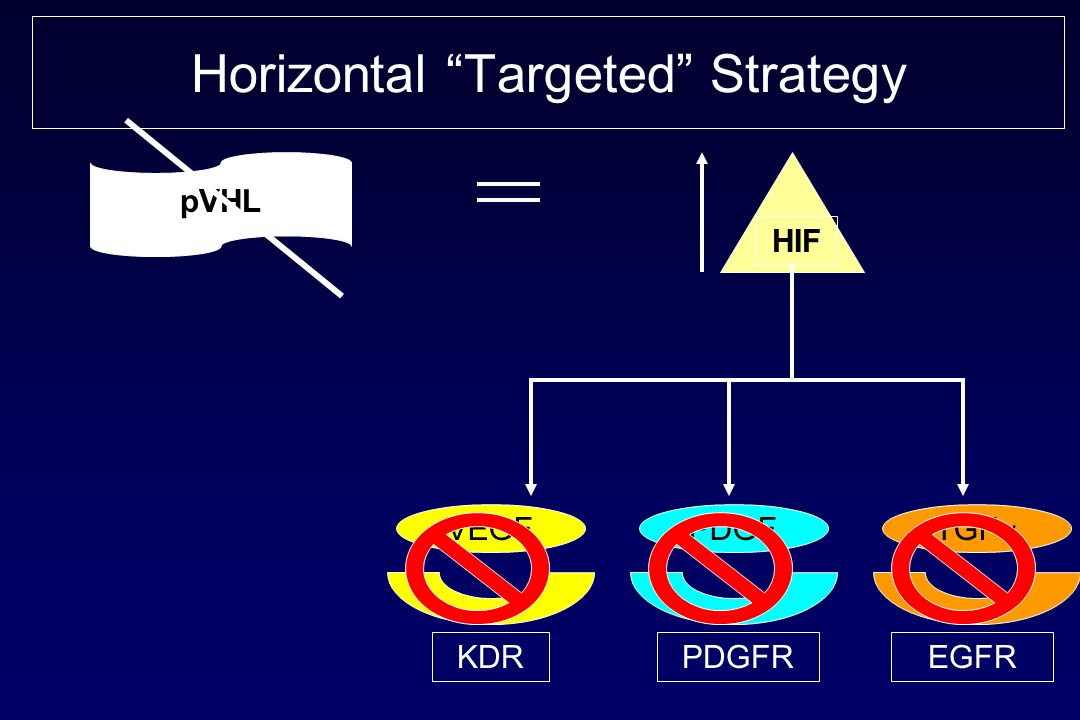 Horizontal Targeted Strategy