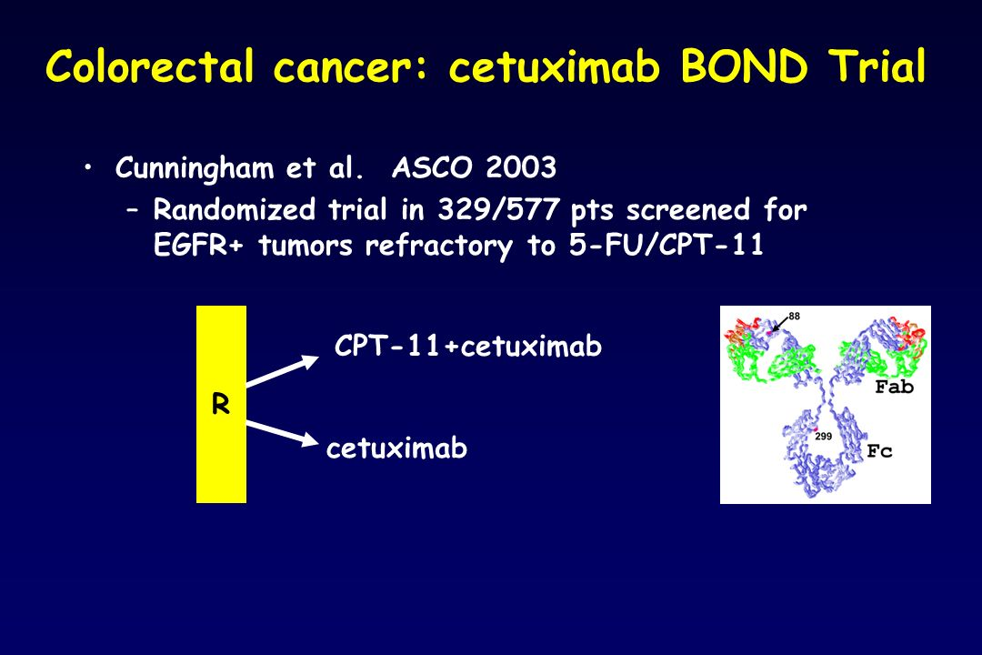 Colorectal cancer: cetuximab BOND Trial