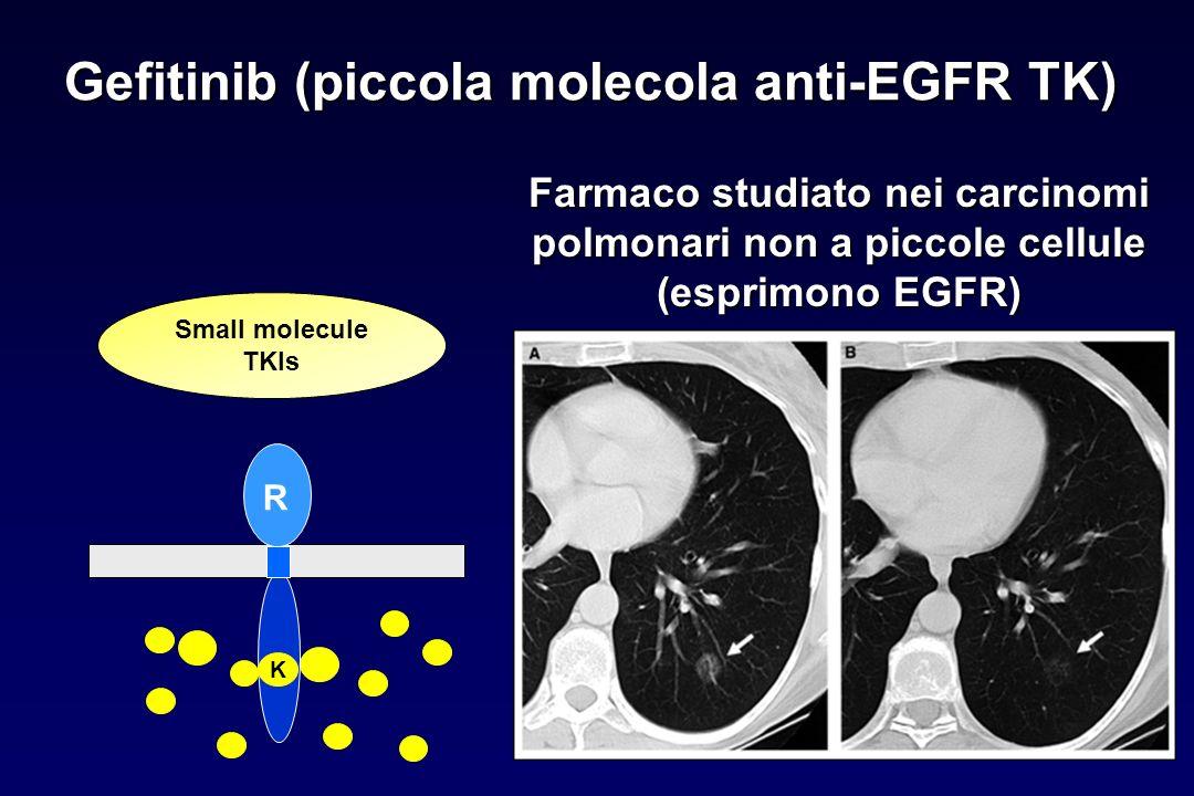 Gefitinib (piccola molecola anti-EGFR TK)