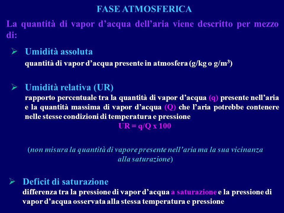 La quantità di vapor d'acqua dell'aria viene descritto per mezzo di: