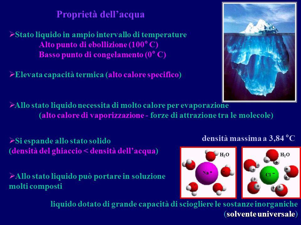 Proprietà dell'acqua Stato liquido in ampio intervallo di temperature