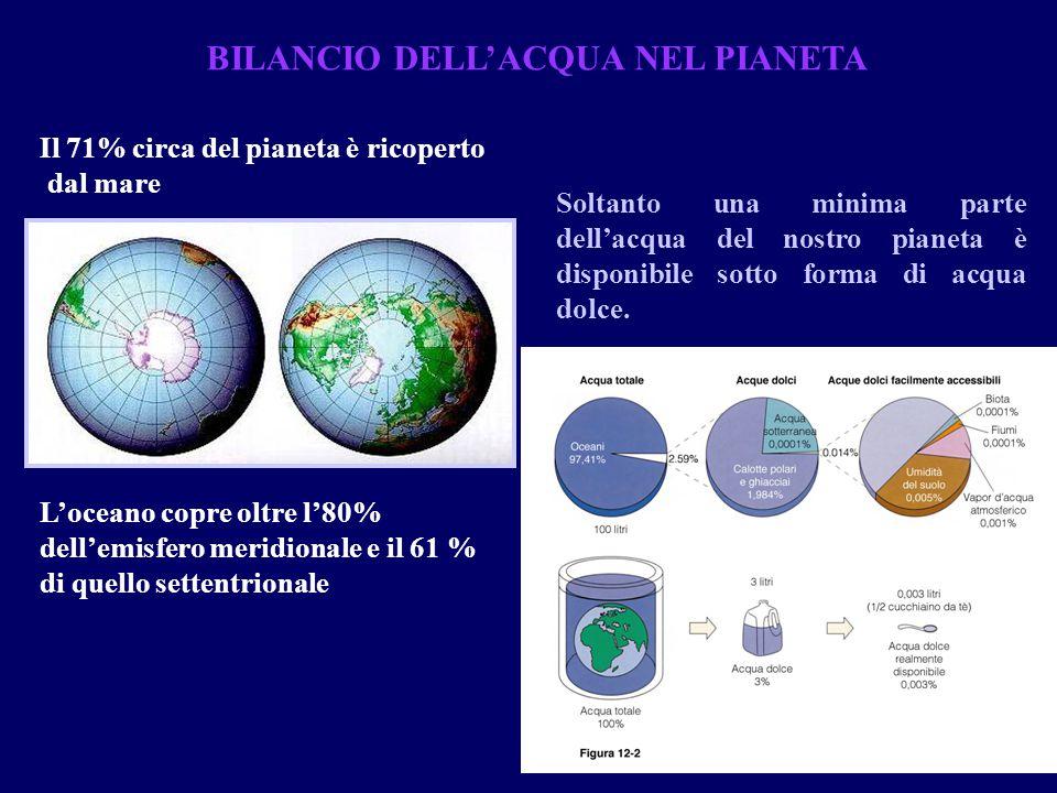 BILANCIO DELL'ACQUA NEL PIANETA