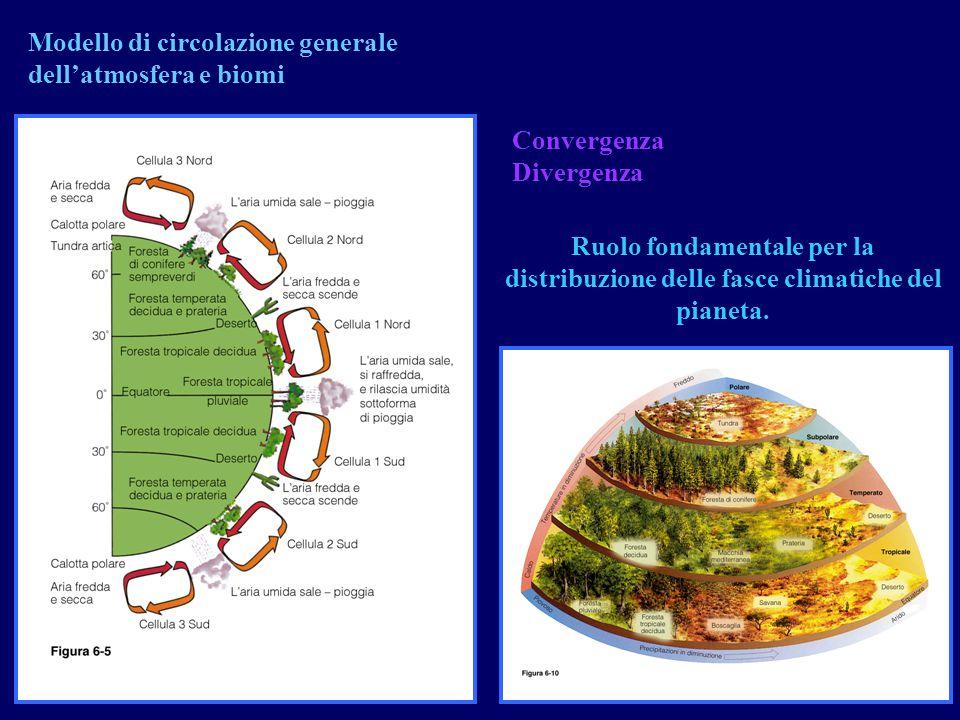 Modello di circolazione generale dell'atmosfera e biomi