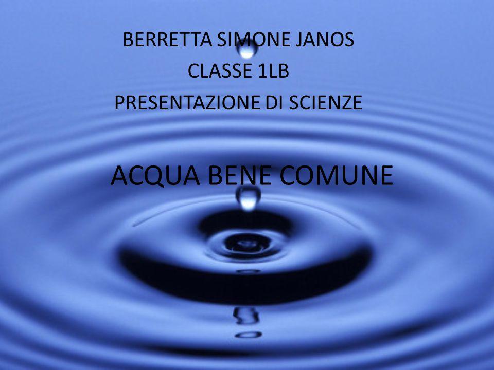 BERRETTA SIMONE JANOS CLASSE 1LB PRESENTAZIONE DI SCIENZE