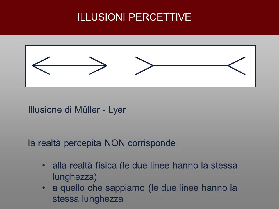 ILLUSIONI PERCETTIVE Illusione di Müller - Lyer