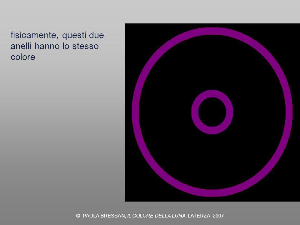 © PAOLA BRESSAN, IL COLORE DELLA LUNA. LATERZA, 2007