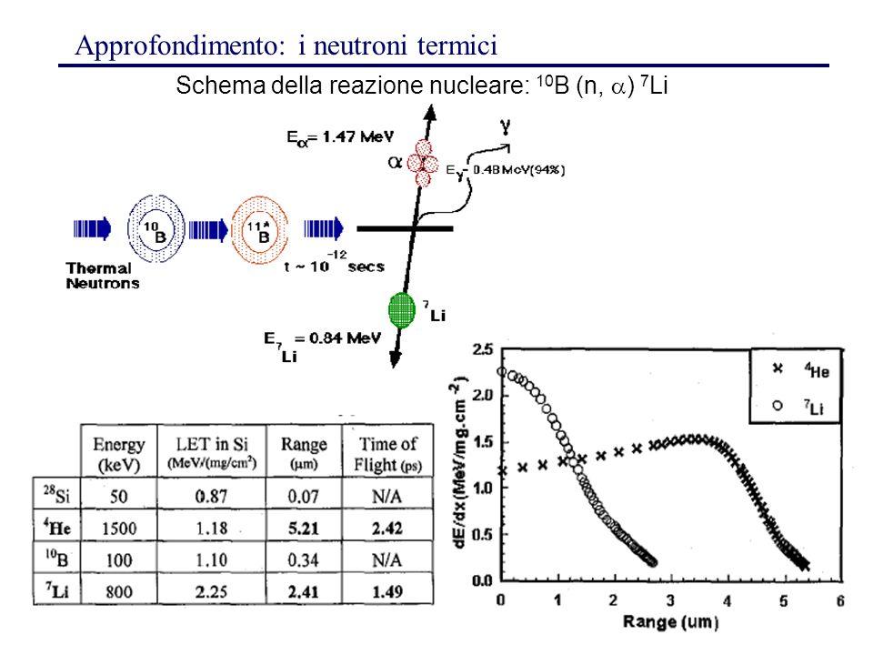 Schema della reazione nucleare: 10B (n,) 7Li
