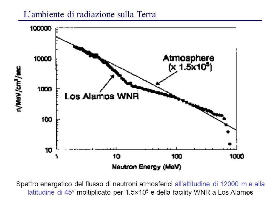 L'ambiente di radiazione sulla Terra