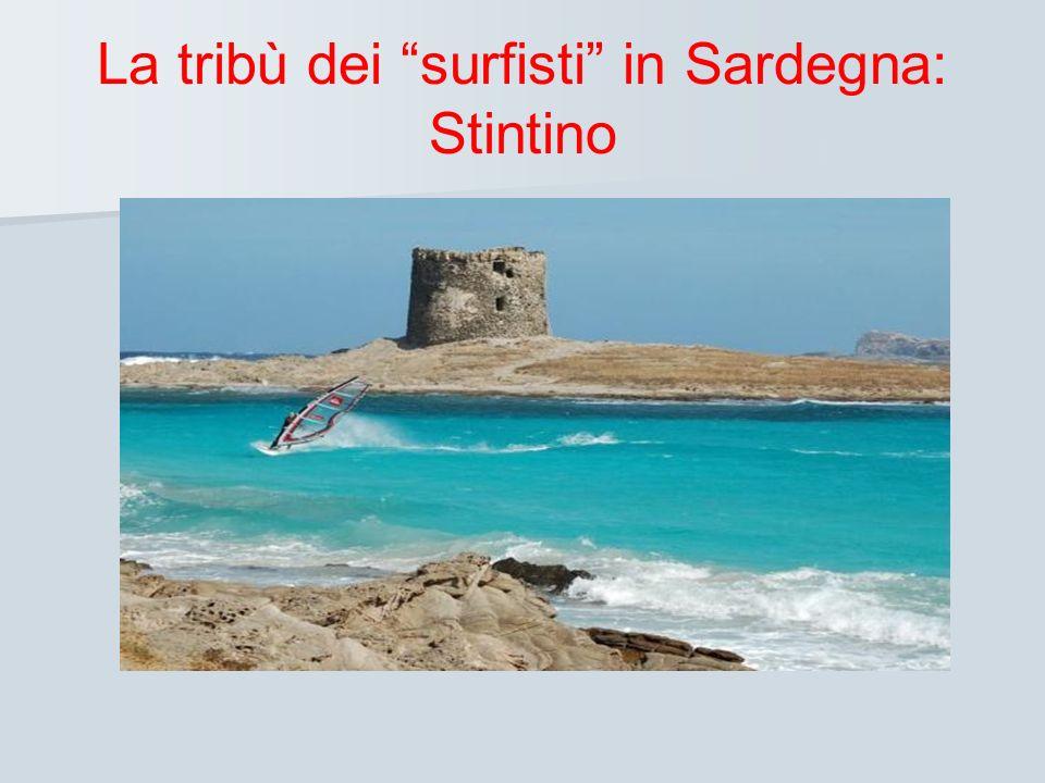 La tribù dei surfisti in Sardegna: Stintino