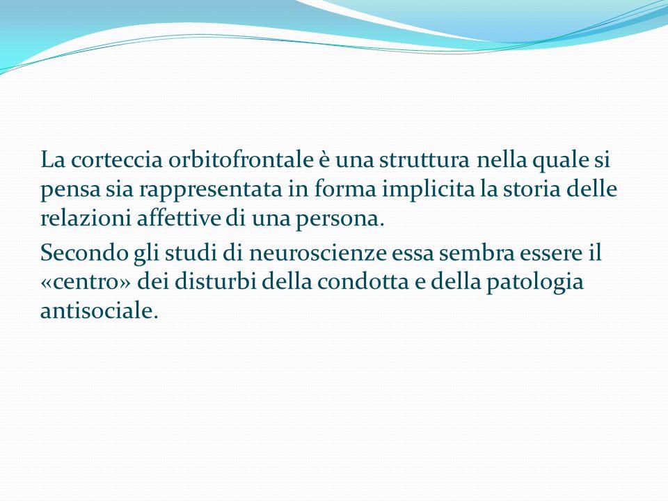 La corteccia orbitofrontale è una struttura nella quale si pensa sia rappresentata in forma implicita la storia delle relazioni affettive di una persona.