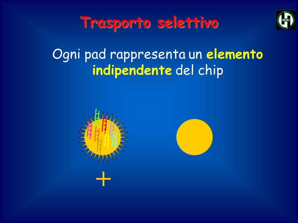 Ogni pad rappresenta un elemento indipendente del chip