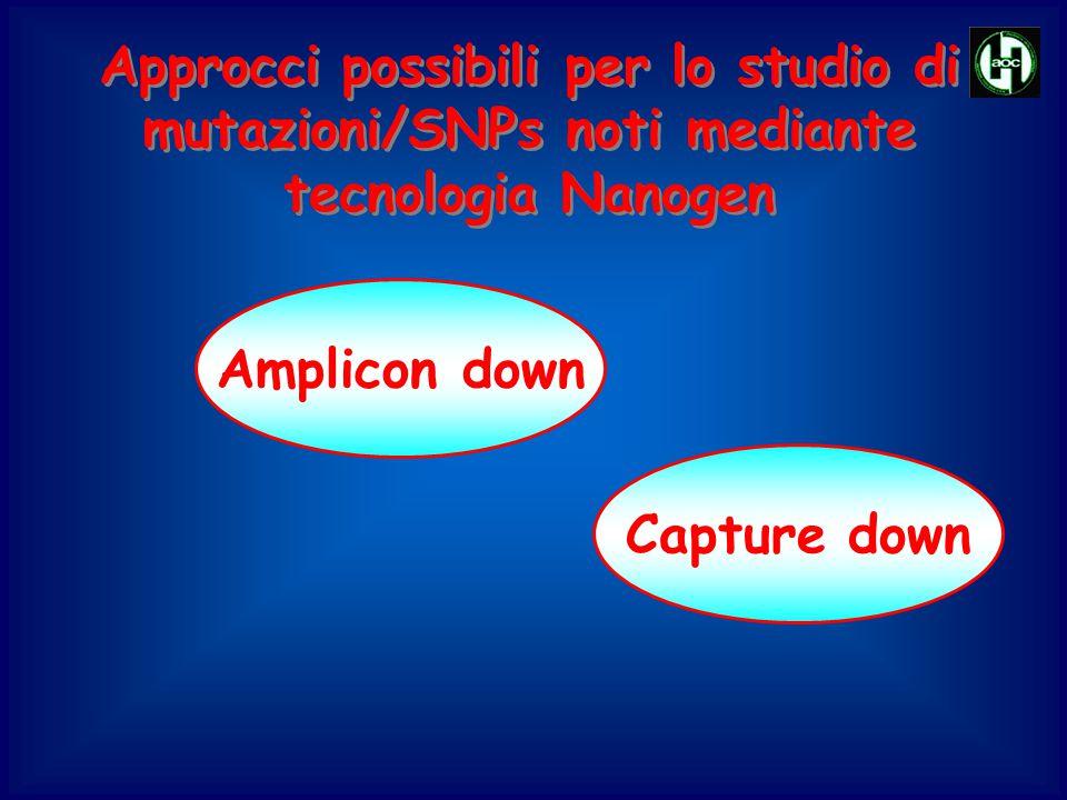 Approcci possibili per lo studio di mutazioni/SNPs noti mediante tecnologia Nanogen